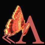 batterfly-19cebb